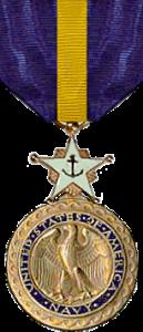 NavyDSM
