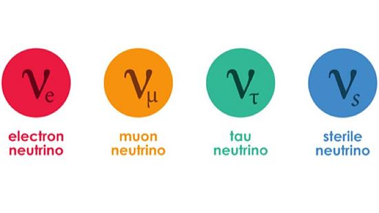 Neutrinas, neutronas, neutroninė žvaigždė, cefeidė, pulsaras, juodoji bedugnė, gravitonas
