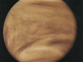 Pioneer-Venera-1 Venera