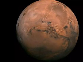Mars 2021 Oposition
